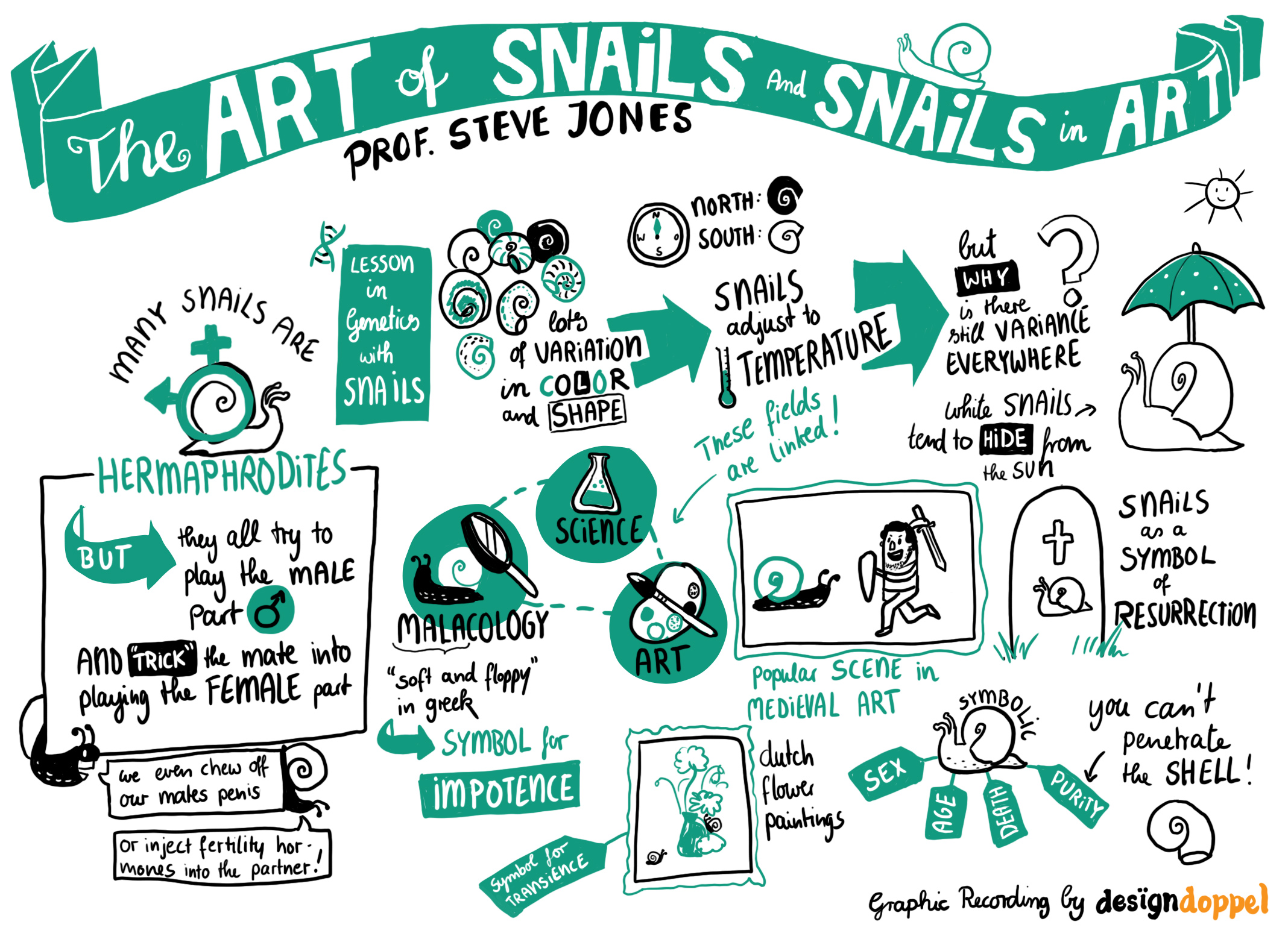 The Art of Snails and Snails in Art